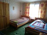 """комната 4 (с видом на поляну), коттедж """"Пулонга"""""""