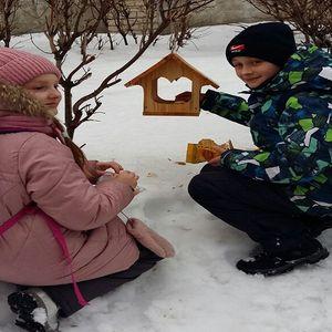 Помощь птицам зимой - доброе дело каждого