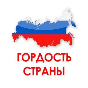 Победитель IX Всероссийского профессионального конкурса