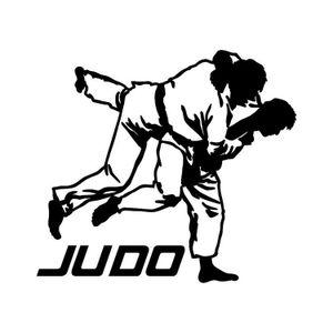 В Мурманске состоялись крупные спортивные соревнования по дзюдо и кобудо