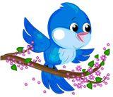 Международный день птиц.