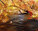 Осенняя речка