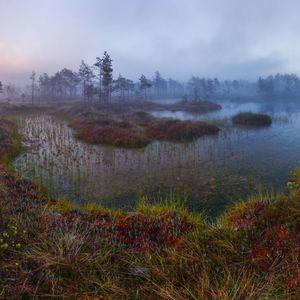 Край туманных болот - Карелия...