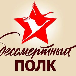 Бессмертный полк Жуковский район