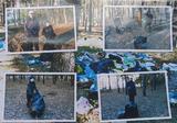 Семья Зубковых на уборке мусора в лесу станицы Вёшенской