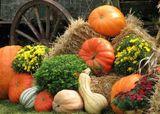 Народный календарь праздников и примет на сентябрь