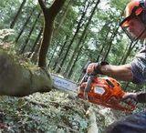 Частное использование, садоводство, мелкое строительство, заготовка дров