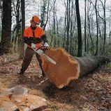 Профессиональное использование, лесное хозяйство, валка, строительство