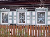 Окна семьи Галушка (Михаил Галушка, 5 класс)