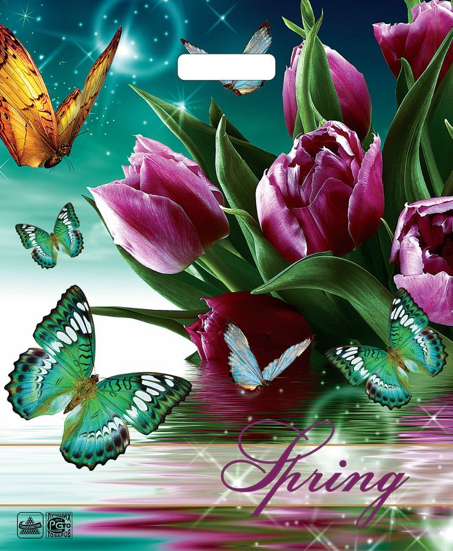 Пакет прор.ручка 38*45 Весна волшебница/25