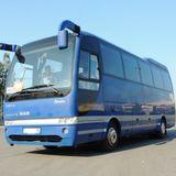 Автобусы           20-30 мест