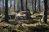 Сплав в Карелии: Укса