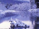 Зимний вид
