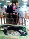 Экскурсия в контактный зоопарк