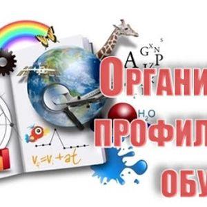 Об организации профильного обучения в общеобразовательных организациях г. Кировска в 2021/2022 году