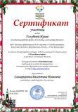 """Сертификат конкурса """"Новогодние истории"""""""