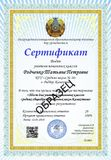 Образец Сертификата Педтестирования