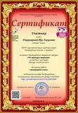 Сертификат конкурса По страницам творчества
