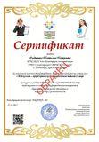 Образец Сертификата 1 Место «Мой коллега – яркий  пример компетентного педагога 21 века»