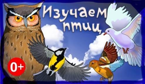 https://cdo-gloria.edu.yar.ru/distantsionnie_materiali/eko_urok_beregite_ptits/ptitsi5_w400_h225.jpg