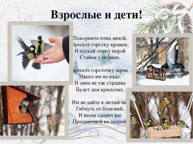 https://ds04.infourok.ru/uploads/ex/05bf/001500d6-b2a71db5/img24.jpg