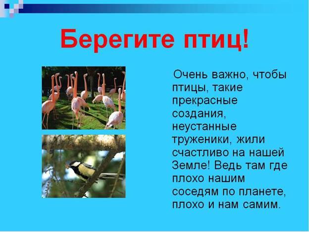 https://ds04.infourok.ru/uploads/ex/0b7b/0010ad4a-5dff545b/img7.jpg