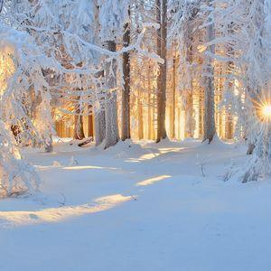 Снегопад поздравлений. Воронцовский СДК