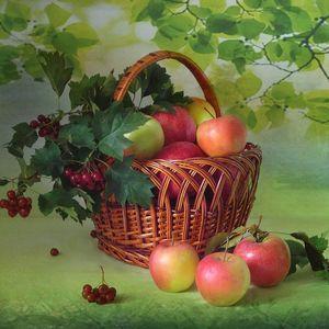 Выставка рисунков «Яблочный Спас - Яблочки припас»