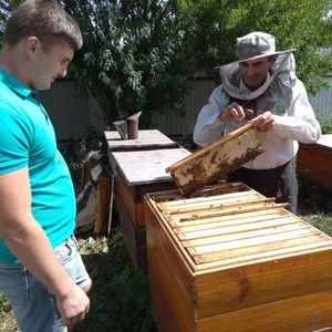 Встреча с пчеловодом Тихоновым Александром Владимировичем