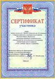 Сертификат участника РМО - 2016