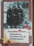 Толубаев Михаил Дмитриевич (1919 - 1942) В 1939 г. был призван в Красную Армию. Был старшим сержантом, командиром взвода 100 Гвардейской стрелковой дивизии.