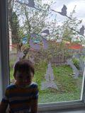 окно семьи Ашихмина Вани