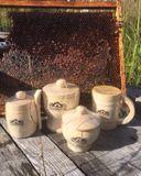 Теперь еще и мед! Собранный трудолюбивыми пчелками на карельских лугах. Отличается нежным вкусом и наивысшими целебными свойствами. Вепсский мед и Карелии.