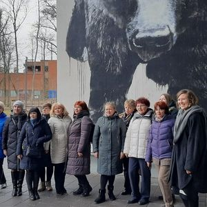 Проект EDUWATER: учителя из Петрозаводска изучили финский опыт в Хельсинки