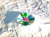 Цветик – разноцветик»