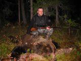 Трофей медведя (май 2011)