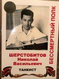 Шерстобитов Николай Васильевич