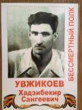 Увжикоев Хадзибекир Сангеевич