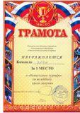 1 место Новогодний турнир по волейболу среди девушек г.Богородск