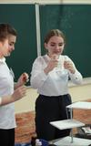 Отчет группы экспертов на уроке химии