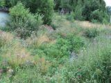 КНС (канализационная насосная станция) Рауталахти, без очистки