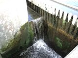 Treated water discharged from STP in Sortavala