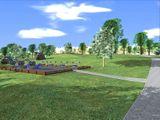 «Реконструкция парка в Соломеном»
