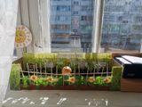 Солнечный огород гр. № 3