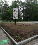 2020 г., пгт. Пряжа, ул. Советская, озеленение территории, установка бордюрных камней, освещение Стоимость работ: 154 995,00 рублей.