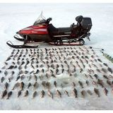 Рыбалка зима