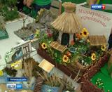 Слёт юных экологов в Неклиновском районе