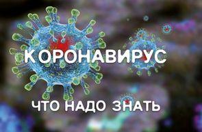 Профилактика короновирусной инфекции в школе