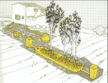 Схема системы очистки бытовых сточных вод с использованием ванн фитоочистки