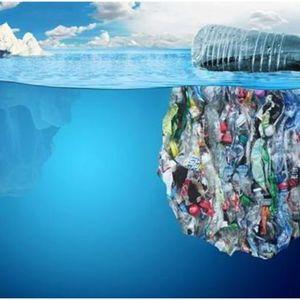 «Борьба с загрязнением пластиковыми материалами» («Tackling Plastic Pollution»)